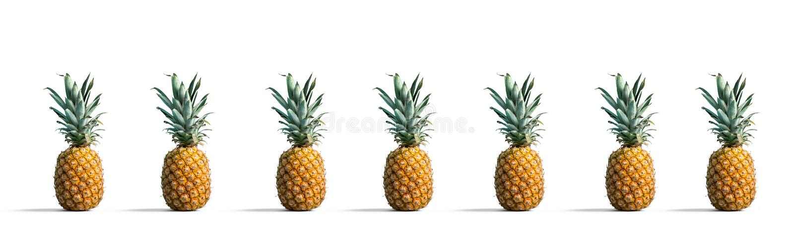 Pineapples on a solid color background. Many pineapples on a solid color background royalty free stock image