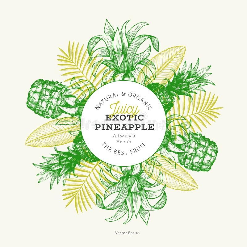 Pineapples and tropical leaves design template. Hand drawn vector tropical fruit illustration. Engraved style ananas fruit banner stock illustration