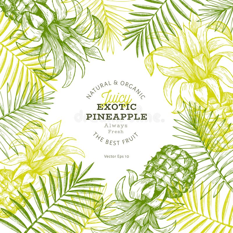 Pineapples and tropical leaves design template. Hand drawn vector tropical fruit illustration. Engraved style ananas fruit banner royalty free illustration