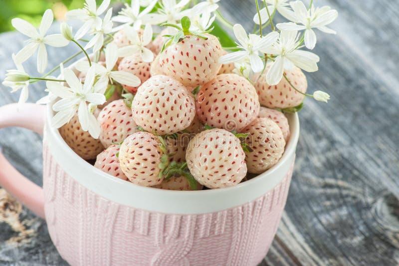 Pineberries frescos maduros en una taza rosada en un estilo r?stico con el peque?o primer de las flores blancas foto de archivo