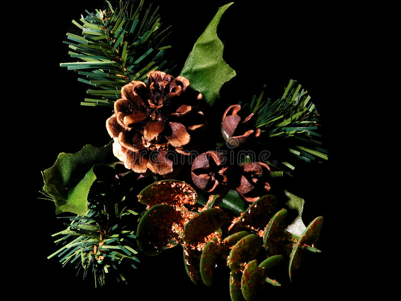 Download Pinecone on Black stock photo. Image of artificial, needle - 36184