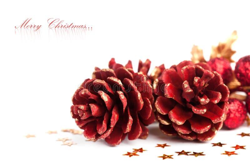 Pinecone De La Navidad Fotos de archivo