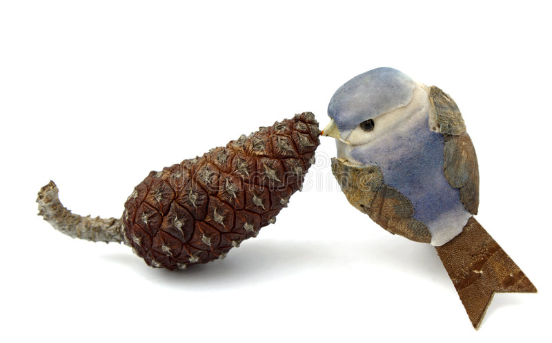 Pinecone and little bird. Attraction and love between pineapple and little bird royalty free stock photography