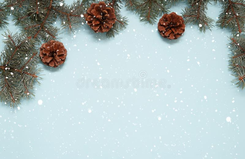 Pinecones and branches on blue background. royalty free stock photos