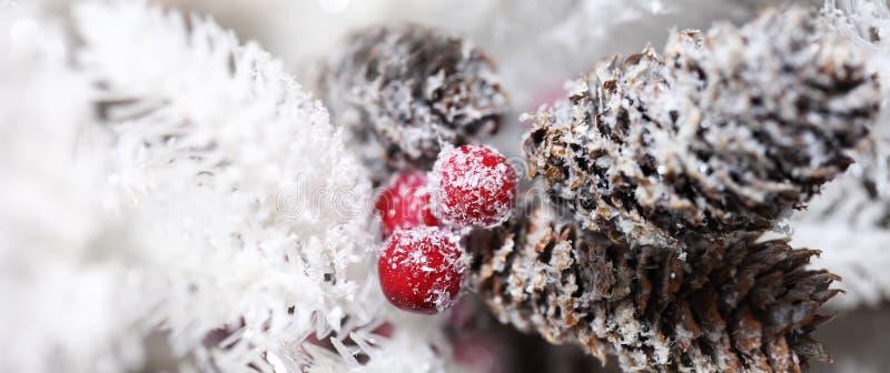 Pinecones de la Navidad y baya del acebo imágenes de archivo libres de regalías