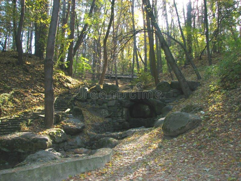 Pinery πάρκων τοπίων στοκ φωτογραφία με δικαίωμα ελεύθερης χρήσης
