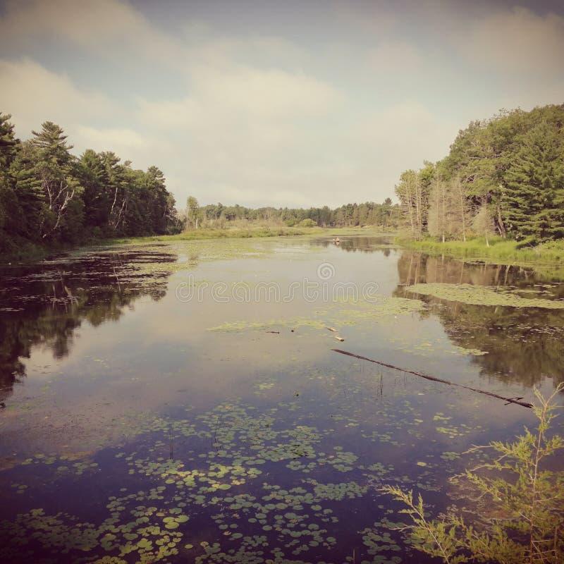 Pinery park stock photo