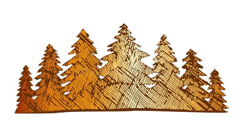 Pinery tirato Forest Vector conifero del paesaggio di colore illustrazione di stock