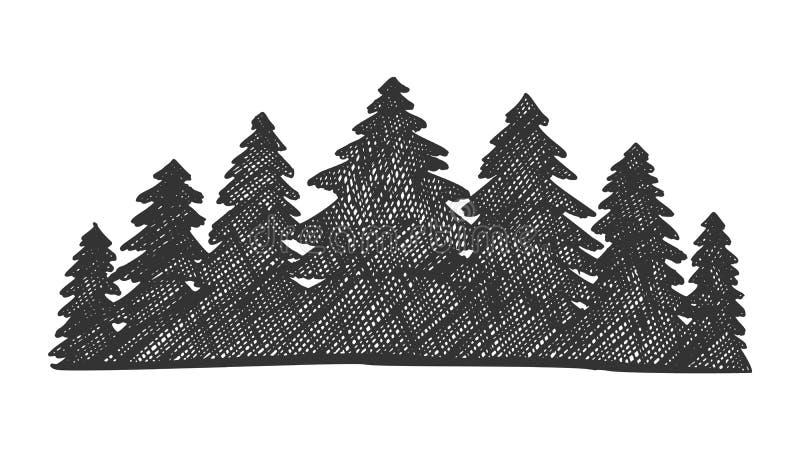 Pinery tirato Forest Vector conifero del paesaggio illustrazione di stock