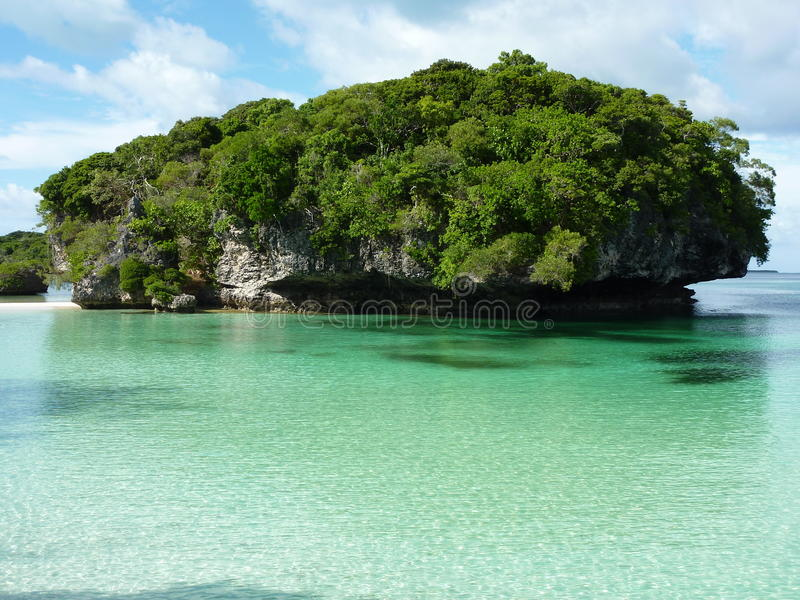 Download Pines Island 2 stock image. Image of beach, wonderful - 25530369