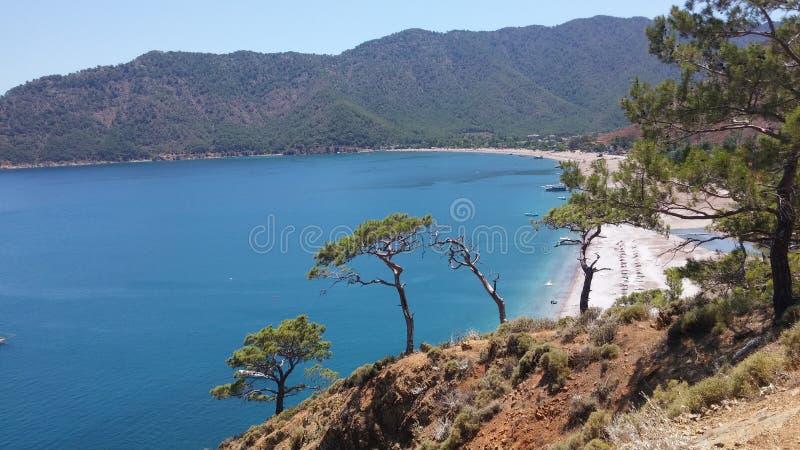 Pines trees at rock above Adrasan Beach. Adrasan Beach Turkey summer time royalty free stock image