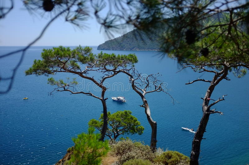 Pines trees at the rock above laguna sea background. Turkey Adrasan sea coast and mountains stock photo
