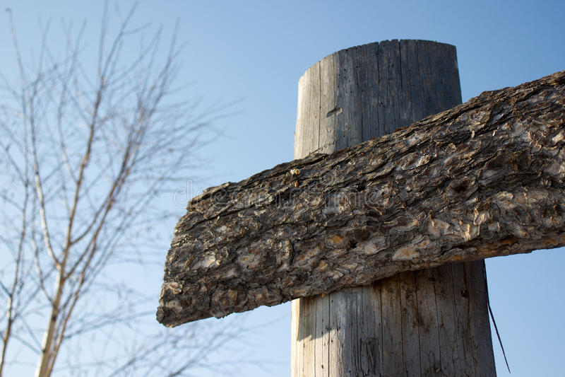 Pinewood σανίδες στοκ εικόνες