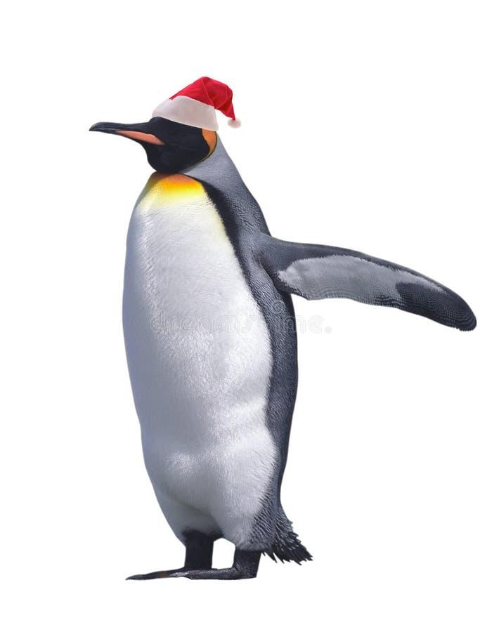 Pingüino de emperador aislado foto de archivo