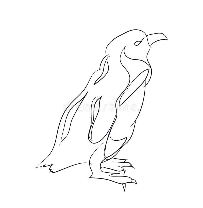 Pingüino, línea, vector libre illustration