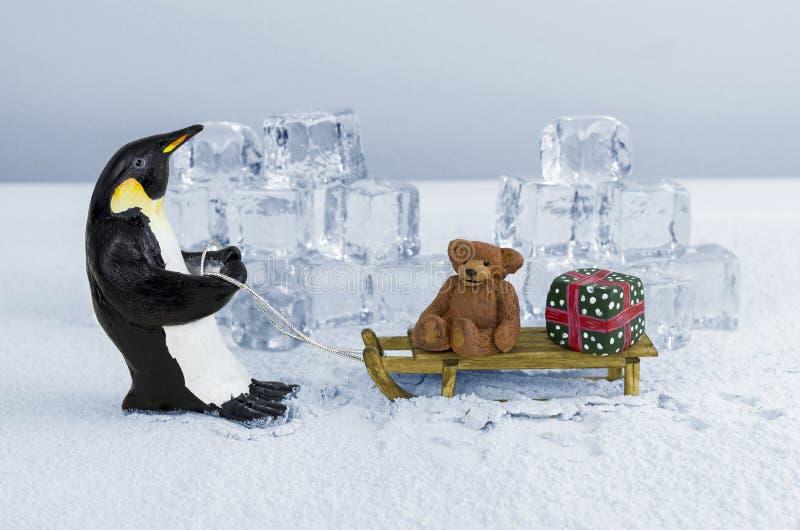 Pingüino que tira del trineo fotos de archivo libres de regalías