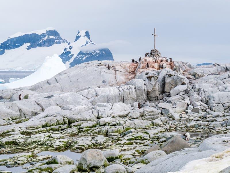 Pingüinos de Gentoo y cruz de la conmemoración para el Su antártico británico fotografía de archivo libre de regalías