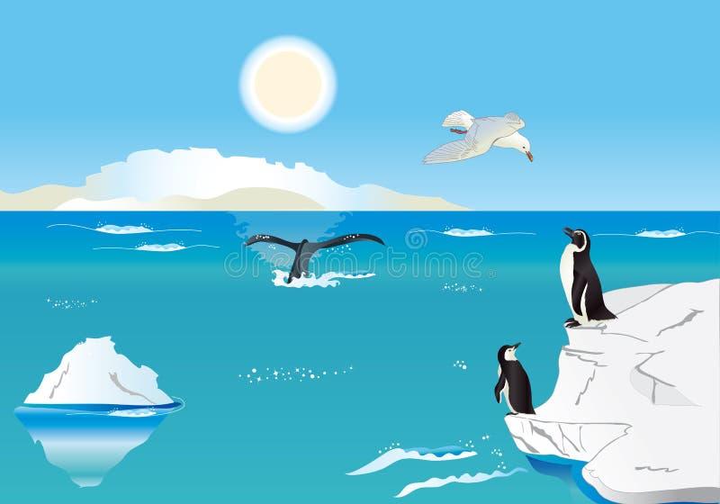 Pingüinos en el poste del sur 1 ilustración del vector