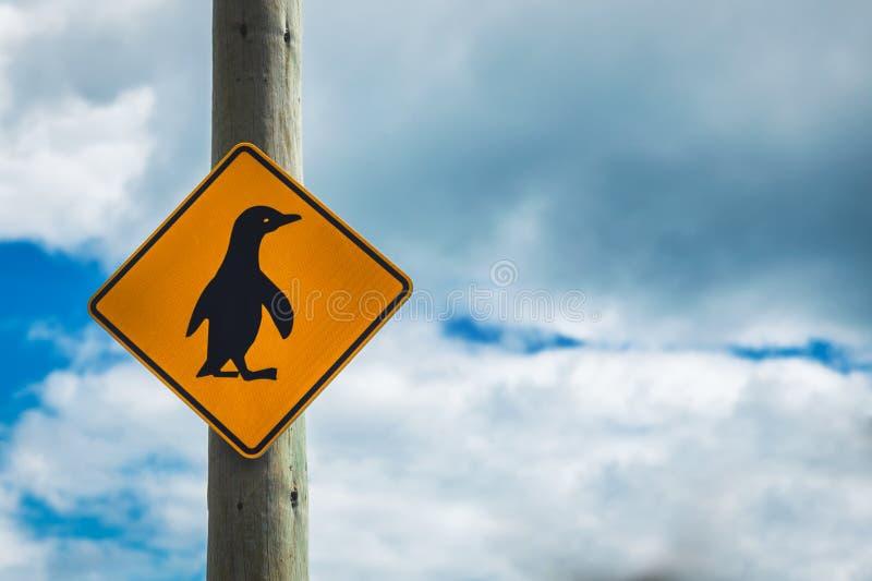 Pingüinos que cruzan la muestra con el fondo Nueva Zelanda del cielo nublado fotografía de archivo libre de regalías