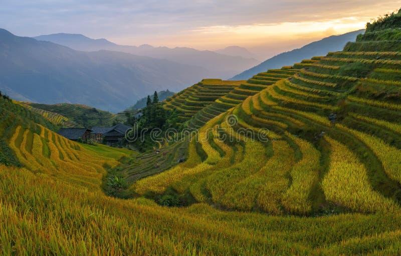 Ping An Rice Terraces, China royalty free stock photos