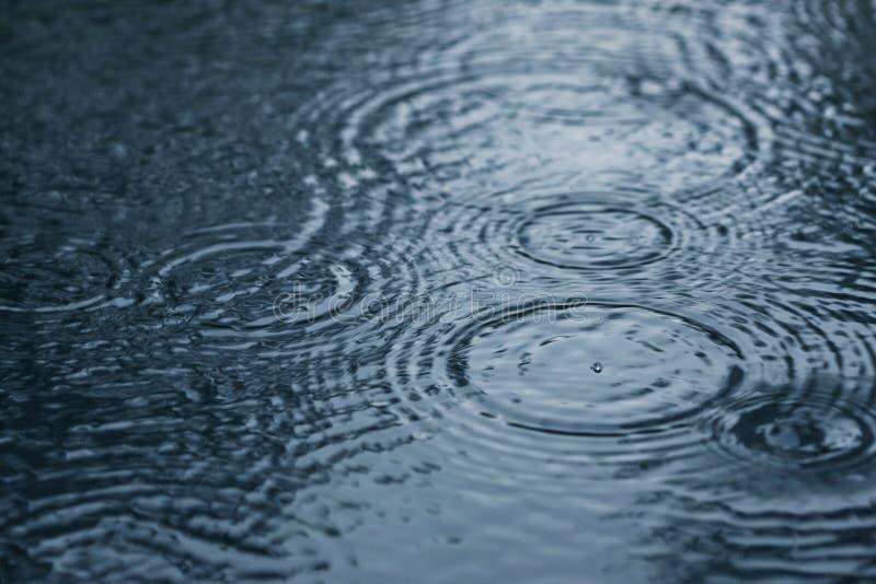 Pingos de chuva fotografia de stock