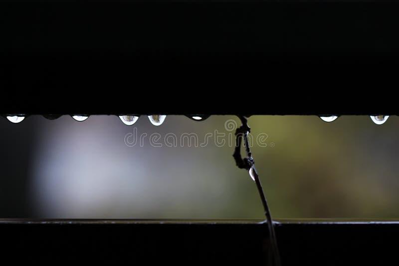 Pingos de chuva brilhantes em uma tarde chuvosa imagens de stock royalty free