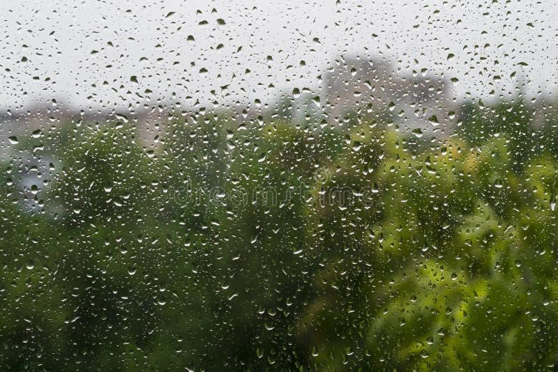 Pingos de chuva em uma placa de janela imagens de stock royalty free