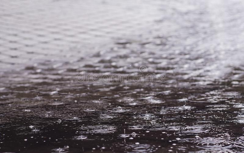 Pingos de chuva em pingos de chuva de uma poça em uma poça imagem de stock royalty free