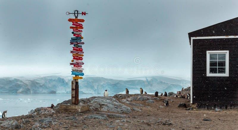 Pingouins ? une base chilienne en Antarctique photos stock