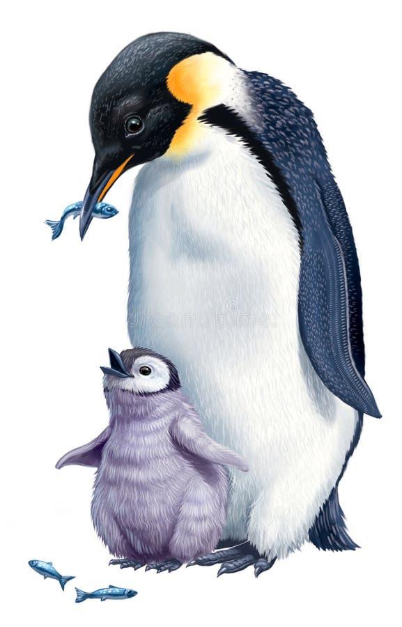 Pingouins de dessin animé illustration stock