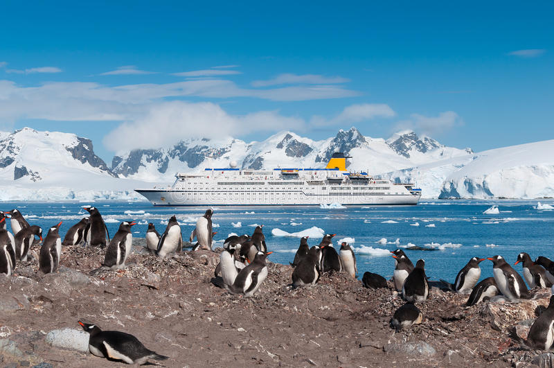 Pingouins de l'Antarctique et bateau de croisière photo libre de droits