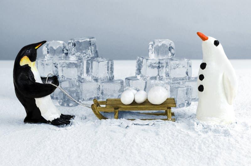 Pinguïn met sneeuwballen stock foto's