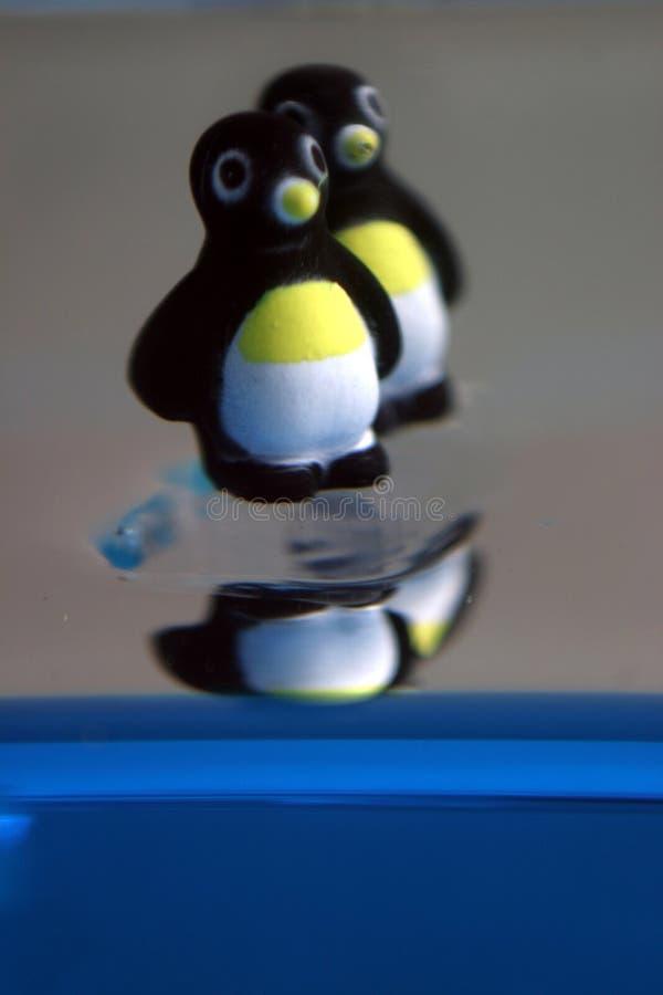 Pinguïnen op Ijs