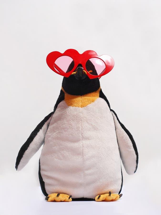 Pinguim bonito em vidros heart-shaped vermelhos foto de stock royalty free