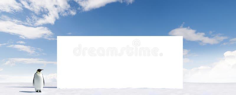 Pinguim e quadro de avisos em branco foto de stock royalty free