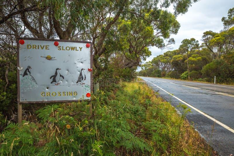 Pinguini che attraversano segno immagine stock libera da diritti