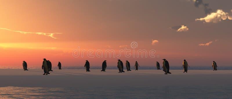 pinguini che escono da un igloo illustrazione di stock