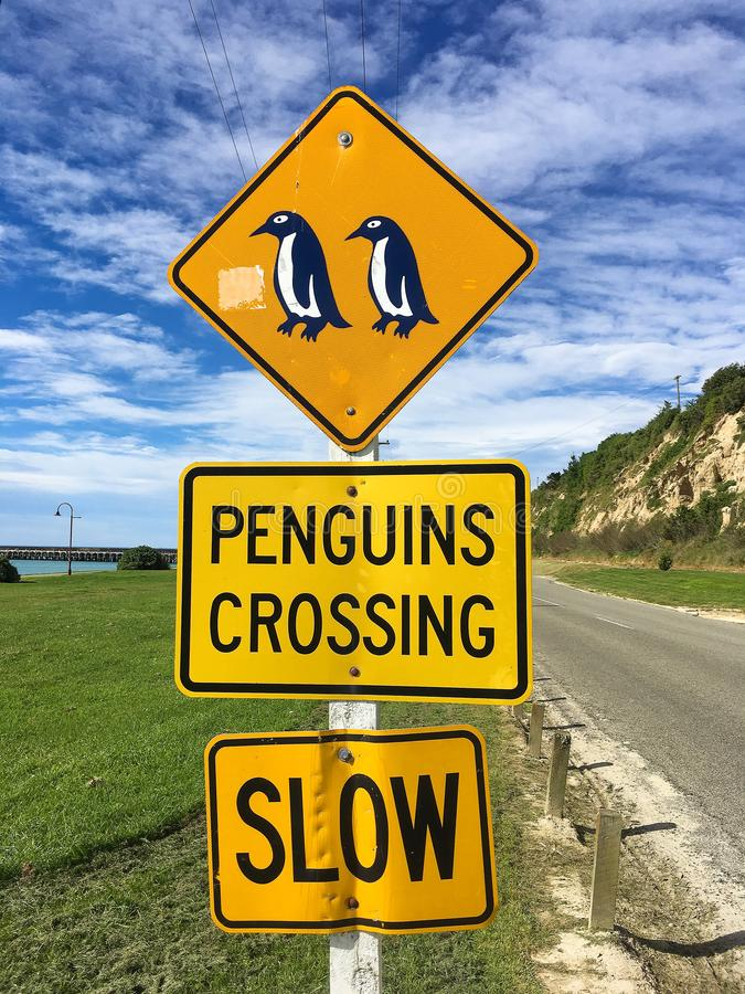 Pinguinkreuzung Geschwindigkeitskameras in Kraft lizenzfreies stockbild