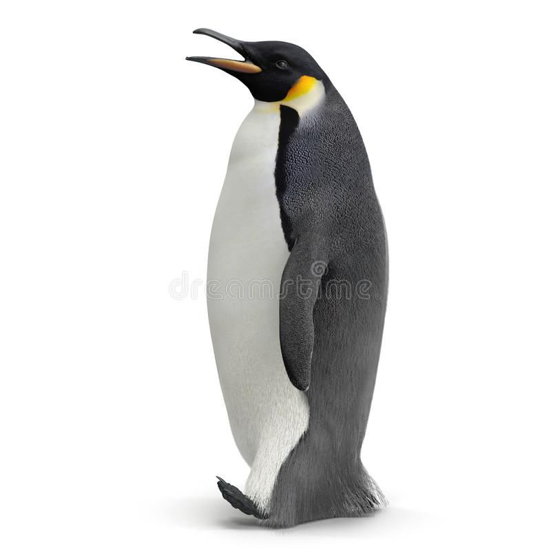 Pinguino di re isolato su bianco illustrazione 3D royalty illustrazione gratis