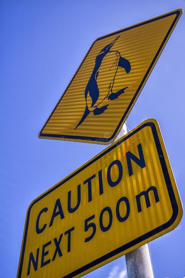 Pinguins-Vorsicht, Nelson New Zealand lizenzfreies stockbild