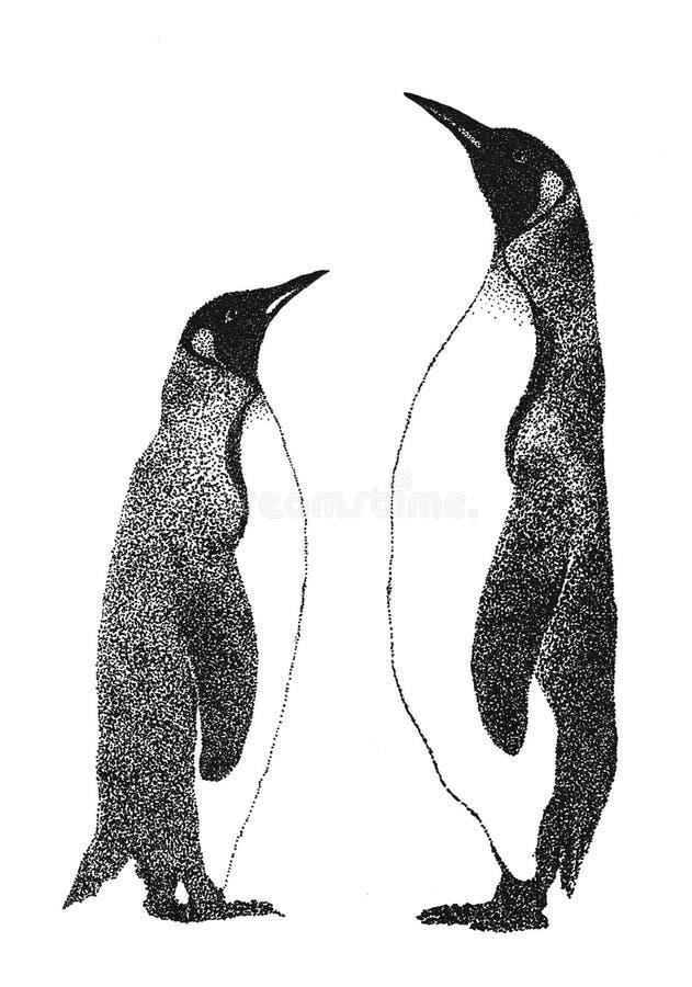 pingvin två stock illustrationer