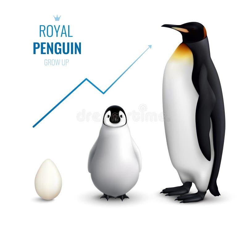 Pingvinet växer upp realistisk vektor illustrationer