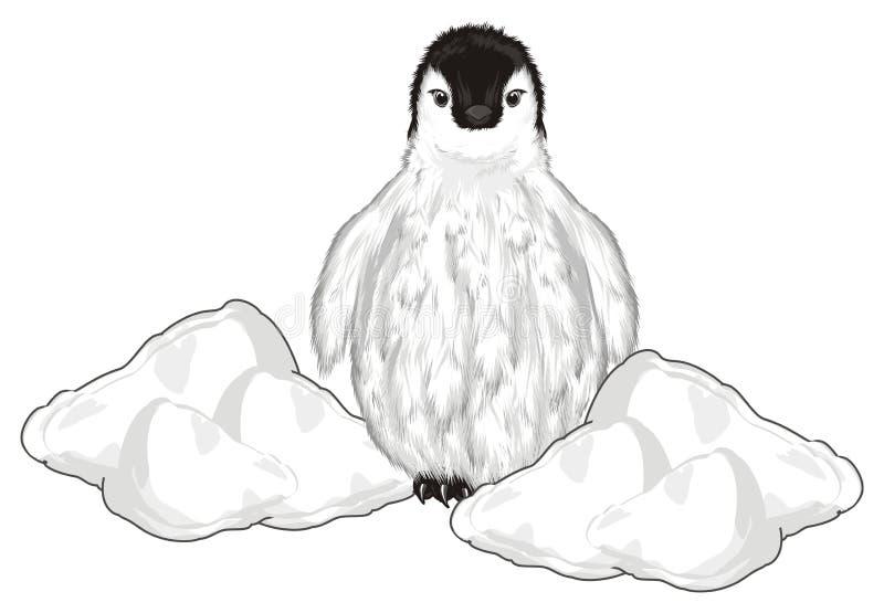 Pingwinu zerknięcie up od śniegu ilustracja wektor