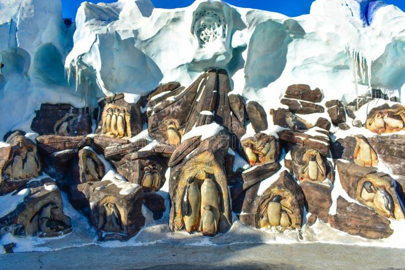 Pingwiny rzeźbiący w kamieniu przy Seaworld w zawody międzynarodowi Jadą teren obraz stock