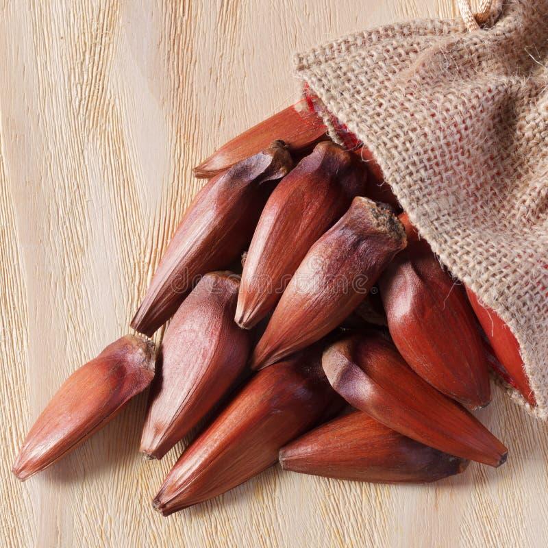 Download Pinhao - Brazylijska Sosna W Parcianej Torbie Na Drewnianym Stole Obraz Stock - Obraz złożonej z nutshell, jungfrau: 53783503