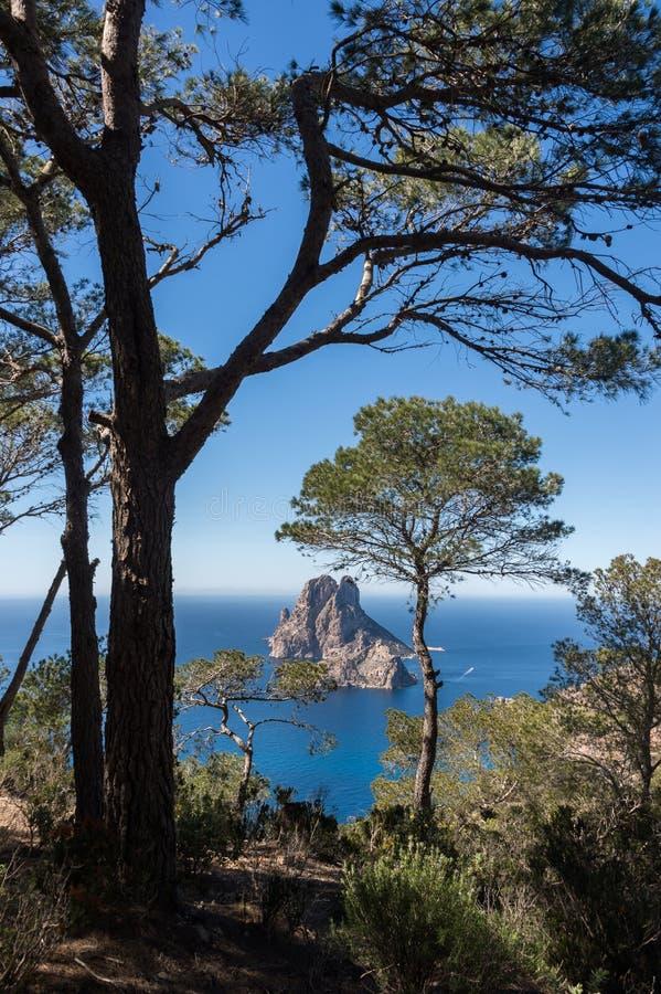 Pinheiro do por do sol do Es Vedra Ibiza imagem de stock