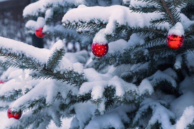 Pinheiro nevado decorado para o Natal com bolhas vermelhas foto de stock royalty free