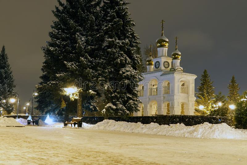 Pinheiros do Natal no inverno na cidade da noite imagem de stock