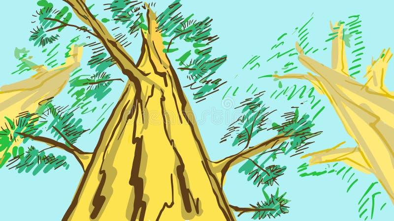 Pinheiros dos desenhos animados Esboço colorido do vetor dos desenhos animados ilustração stock