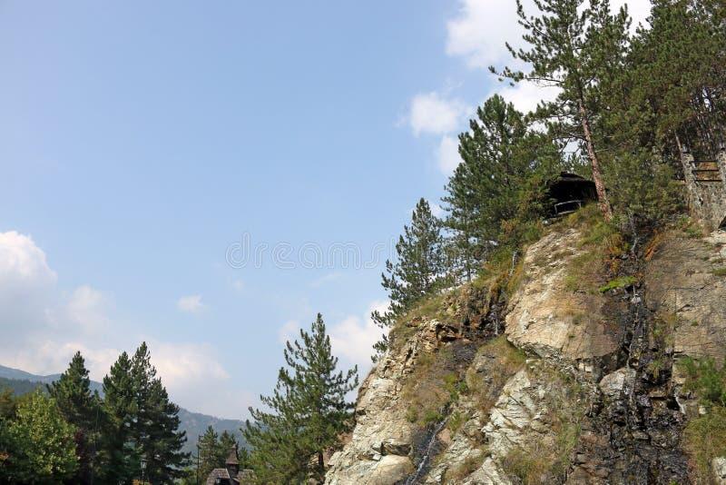 Pinheiros e montanha das rochas fotos de stock royalty free